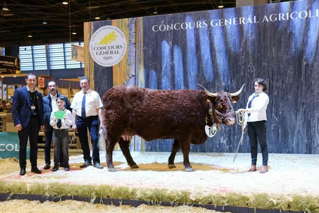 Palmar s du concours salers au salon de l 39 agriculture 2018 - Salon de l agriculture resultat concours ...