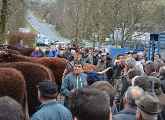 chargement animaux salon agriculture 2014