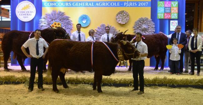 Palmares et replay du concours salers au salon de l 39 agriculture 2017 groupe salers evolution - Palmares salon de l agriculture ...