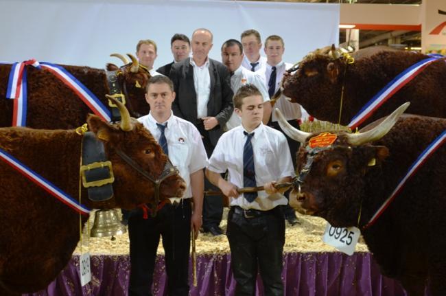 Le concours salers au salon international de l 39 agriculture groupe salers evolution - Palmares salon de l agriculture ...