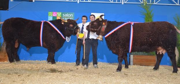 Les r sultats du concours au salon de l 39 agriculture 2014 - Salon de l agriculture resultat concours ...